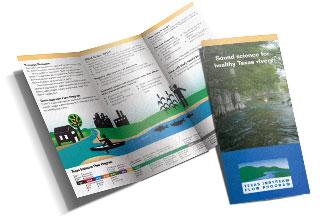 TIFP Brochure
